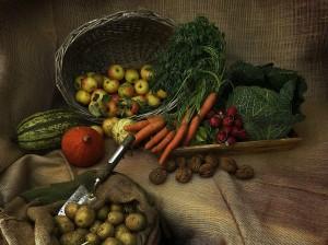 Dystrybucja dodatków do żywności – z czego korzystają producenci żywności